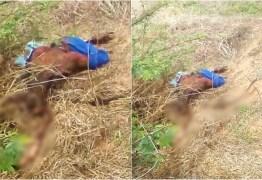 Mistério em Teixeira: Corpo é encontrado em avançado estado de decomposição