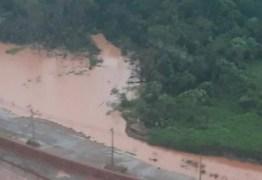 Após vazamento, Ibama multa em R$ 20 milhões e embarga mineradora no PA