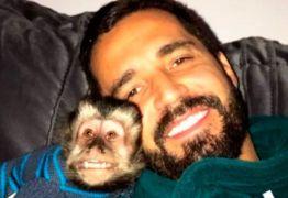 Depois de morte de Twelves, Latino ganha novo macaco-prego
