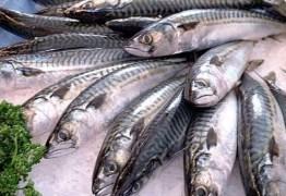 Quilo de fruto do mar apresenta variação de preços de 85% em João Pessoa