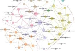 Pesquisadores mapeiam as redes de relacionamento entre os escândalos de desvio de dinheiro público no Brasil