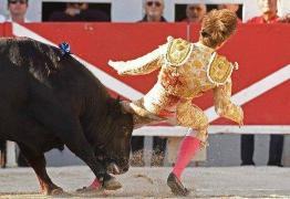 IMAGEM FORTE: Jovem toureiro de 20 anos se descuida e é ferido em arena po touro feroz – VEJA VÍDEO