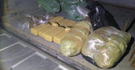 Maconha 300x156 - Polícia Militar apreende 10 quilos de drogas em JP