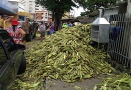 São João: Preço da mão de milho em João Pessoa tem diferença de R$ 15,00