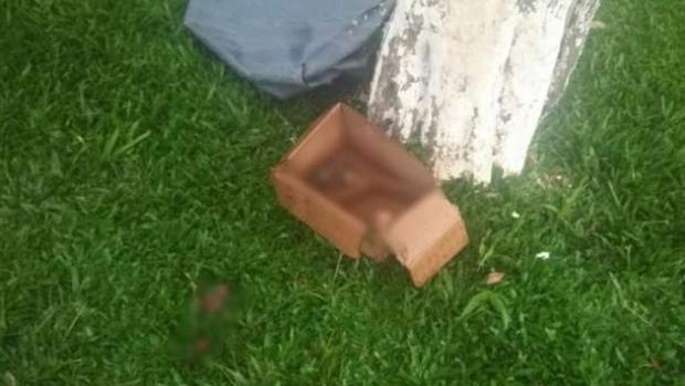 img - Feto é encontrado dentro de caixa de papelão em meio a entulhos de construção