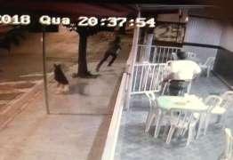 Cadela avança em assaltante e evita crime em sorveteria – VEJA VÍDEO!
