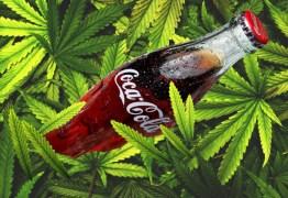 Coca-Cola estuda possibilidade de lançar refrigerante de maconha