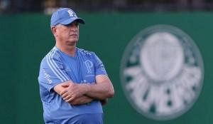 44225672091 0772bcd852 o 300x174 - É possível! Cinco motivos para acreditar na classificação do Palmeiras contra o Boca