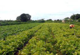 Consumidores não acham que produção de alimento ameace o meio ambiente