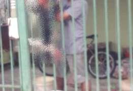 Homem é preso após maltratar gato: 'tirou o couro, esquartejou e fritou o animal', diz policia