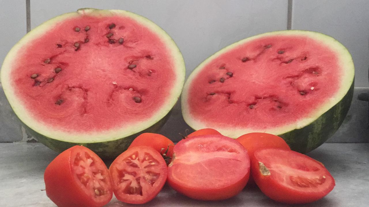3f81dc5c 531d 434c 92e6 4754c1181933 - Boas escolhas alimentares podem contribuir para a prevenção do câncer de próstata