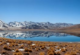 Após 500 anos, choveu no deserto do Atacama – mas teria sido melhor não: ENTENDA