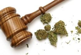 Ministro do STF libera para julgamento ação sobre posse de drogas