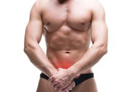 MOMENTO CERTO PARA VIAJAR? Onda de calor na Europa faz órgãos sexuais masculinos parecerem maiores