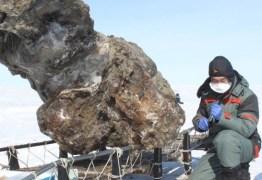 Mamute é encontrado preservado em gelo e com sangue líquido