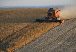 China deixa de importar soja dos Estados Unidos e recorre ao Brasil