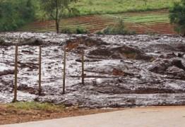 Dez corpos são encontrados em ônibus soterrado em Brumadinho