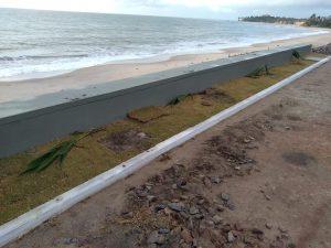 CONDEPLANTAS 300x225 - Márcia Lucena anuncia medidas emergenciais após vândalos arrancarem coqueiros recém-plantados em Conde
