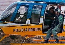 Animais presos no barro em Brumadinho são sacrificados a tiros
