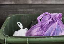 BARBARIDADE: Homem decepa pênis de parceiros e joga no lixo