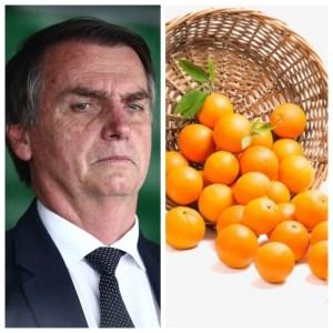Bolsonaro laranjas 300x300 - EFEITO DEVASTADOR: quem trazia na cabeça o balaio de laranjas jogado do topo da ladeira quando mal começava o governo Bolsonaro? - Por Francisco Airton