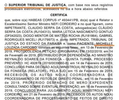 stjhcmichelle 300x252 - Ministro do STJ nega habeas corpus à assessora da Cruz Vermelha que trouxe dinheiro para campanha eleitoral na Paraíba