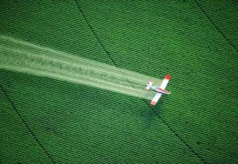 COQUETEL BATIZADO: 12 agrotóxicos são detectados na água potável que abastece João Pessoa; Veja outras cidades