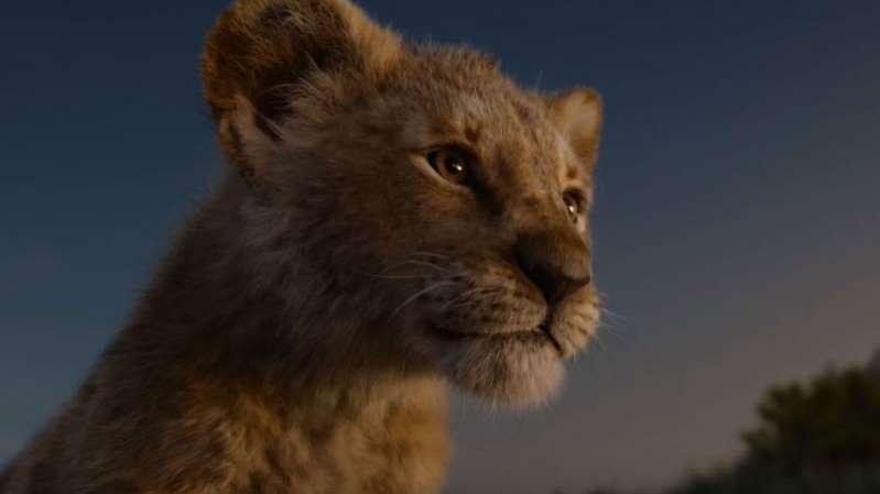 simba rei leão - O REI LEÃO: Simba aprende o ciclo da vida em novo trailer do live-action - VEJA VÍDEO