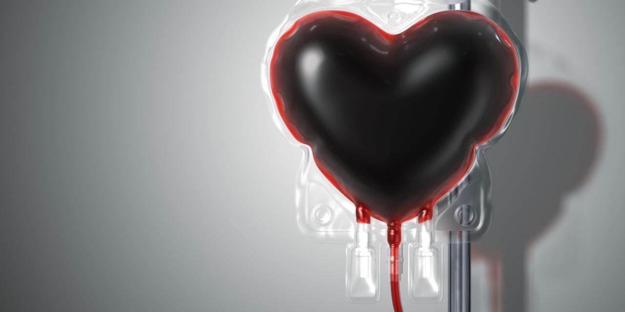 doar sangue santos - Colaboradores do Hospital do Hapvida João Pessoa aderem a campanha e realizam doação de sangue