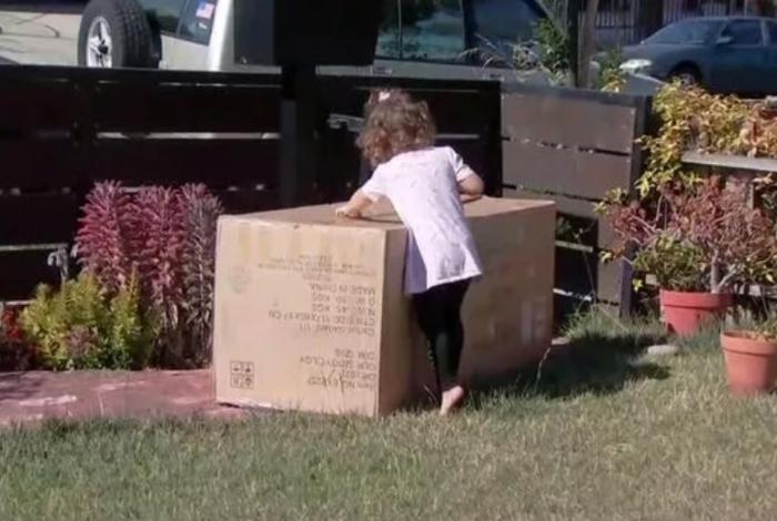 1 nbc 11835937 - Criança de 2 anos compra sofá de mais de R$ 1.600 pelo celular da mãe