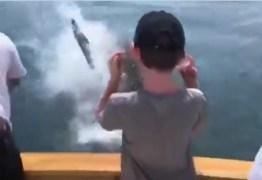 Família é atacada por tubarão branco durante passeio – VEJA VÍDEO
