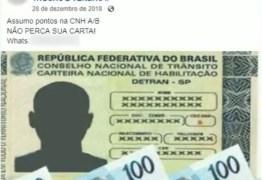 A HOSPEDEIRA: CNH acumula 4,5 mil pontos em multas de outros motoristas