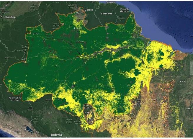 Capturar0 - PREOCUPAÇÃO COM AUMENTO DE DESMATE: Alemanha suspende parte de verba que iria para a Amazônia