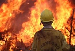DIA DO FOGO: Ibama foi alertado três dias antes das queimadas na Amazônia, mas aviso foi ignorado