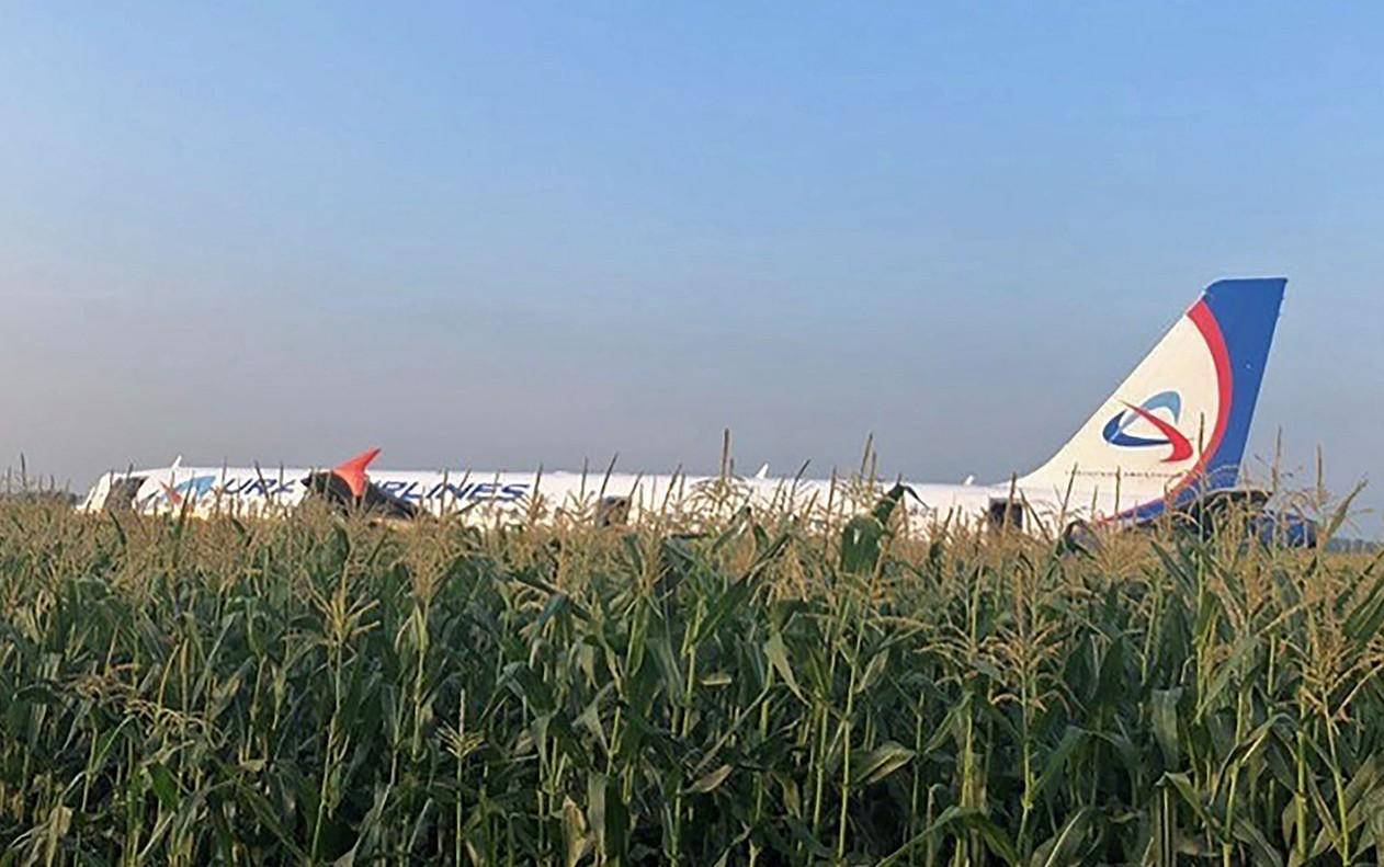 Avião com mais de 200 pessoas a bordo faz pouso de emergência em milharal após colidir com pássaros