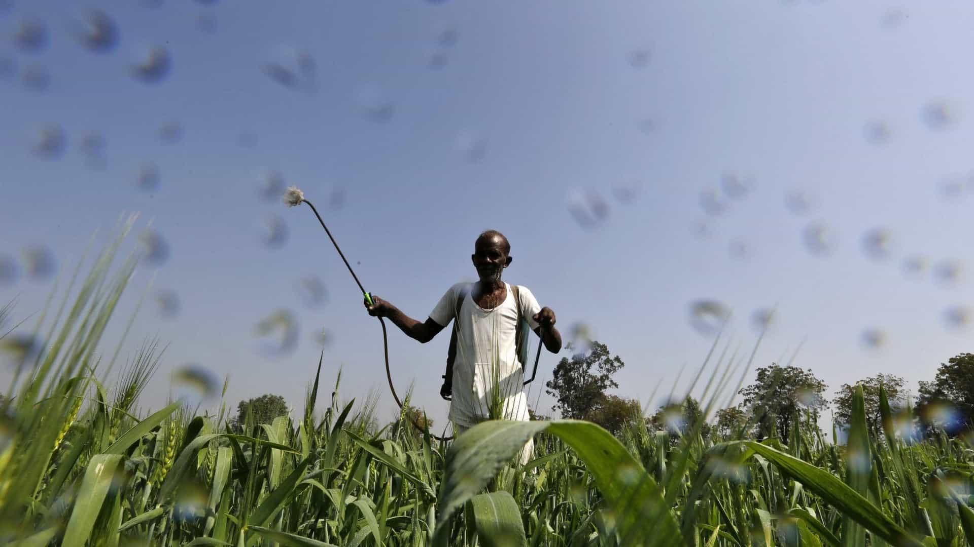 Governo vai aprovar mais agrotóxicos para 'entrar na modernidade'