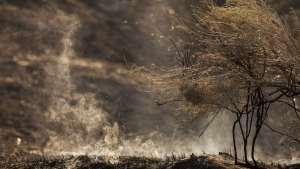 naom 5592611d168f7 300x169 - Focos de queimadas florestais atingem cidades perto de Manaus
