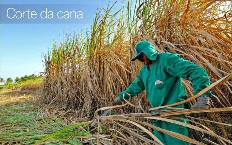13062303 369235579913330 347435311042258595 n - NA ROTA DA CANA: Serra Limpa conquista adeptos em todo território nacional e produz a melhor cachaça branca do Brasil