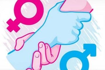 5a1c21186ad04 - A igualdade de gênero como pauta política - Rui Leitão