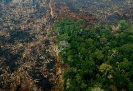 PESQUISA DATAFOLHA: para 75% dos brasileiros, a Amazônia está em risco por causa dos incêndios