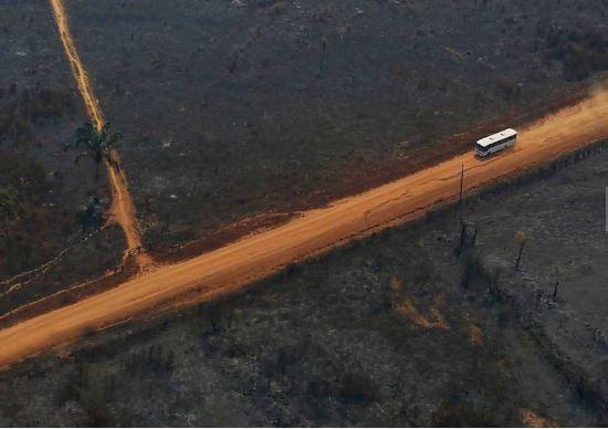 Capturarp - Desmatamento na Amazônia em agosto cresce 222% em relação ao mesmo mês de 2018