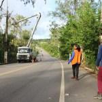 Poda e Supressão PB 018 Conde 8 - Serviços depodae supressão de árvores na rodovia dos Tabajaras em Conde iniciam nesta quarta