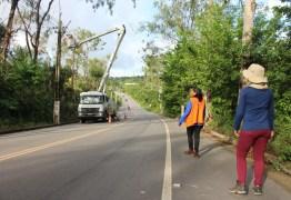 Serviços depodae supressão de árvores na rodovia dos Tabajaras em Conde iniciam nesta quarta