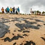 RLQKIYST43M6KTT5FRPQXFVR34 - Shell é acionada na Justiça sobre desastre ambiental no litoral do Nordeste