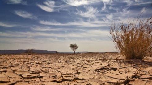 Seca - Com chuvas Paraíba atinge melhor situação desde julho de 2014, aponta Monitor de Secas