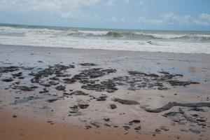 a2bc20119fd9543795d0b0e45a59b020 1 300x200 - Bahia decreta estado de emergência por manchas de óleo no litoral