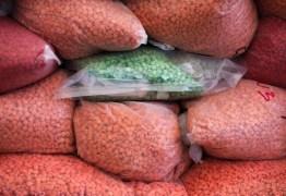 Pescadores encontram sacos de metanfetamina avaliados em US$ 20 milhões