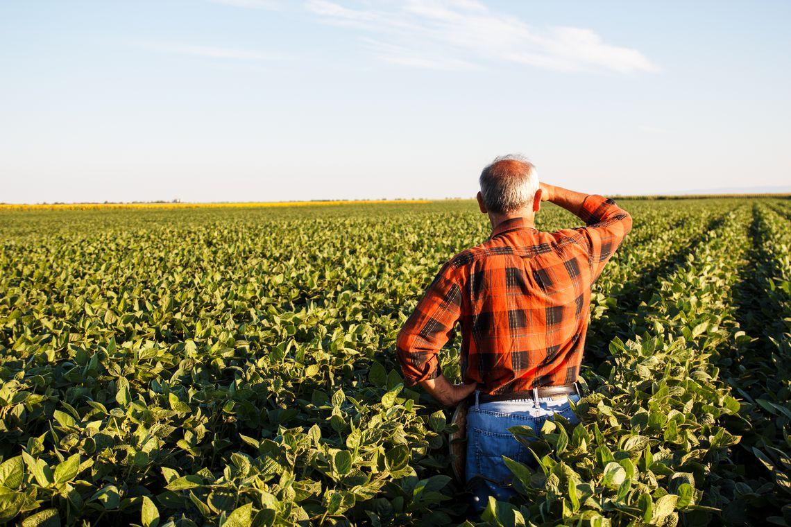 produtor rural - Produtores rurais poderão refinanciar dívidas com juros de 8% ao ano