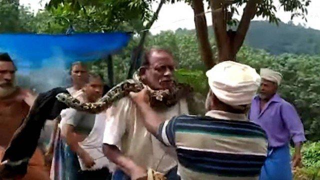 xblog neck 1.jpg.pagespeed.ic .hOJ kBOYI  - Cobra reage a retirada de mata e se enrosca no pescoço de homem
