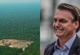 Bolsonaro confirma interesse em exportar madeira nativa